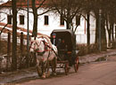 Horse and carriage with traditional trappings, historic Suzdal on Moscow's Golden Ring.