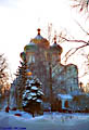 Snow, birches, and Smolensk Cathedral - Moscow, Russia